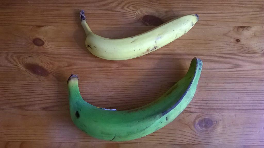 Diferencia entre plátano macho y plátano normal