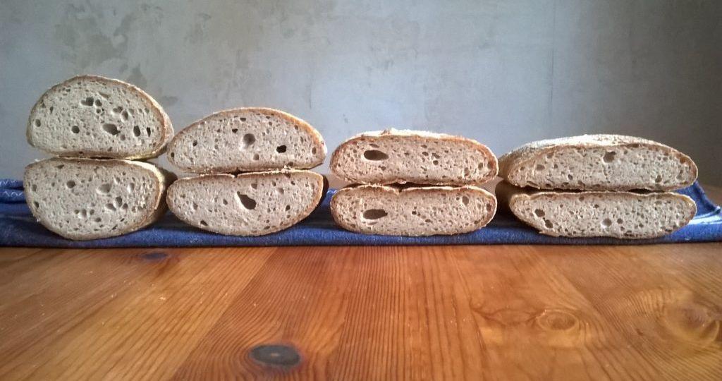 Chapata sin gluten test 1. Comparativa miga.