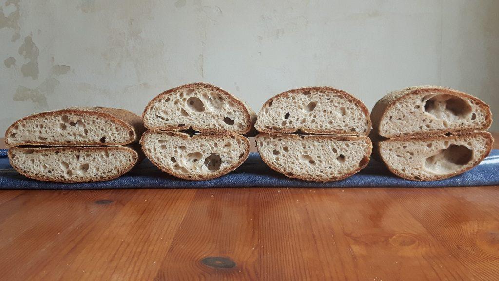 Psyllium husk y pan sin gluten. Diferentes proporciones.