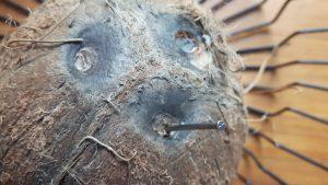 Perfora el coco