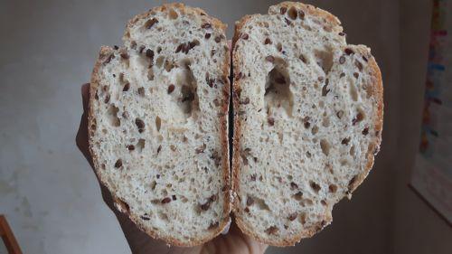 Pan masa madre sin gluten